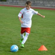 Bild zum Technik-Training der Würzburger Fussballschule Michael Hochrein