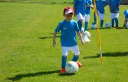 Feriencamp Würzburger Fussballschule Michael Hochrein Pfingsten 2018 - VFR Burggrumbach